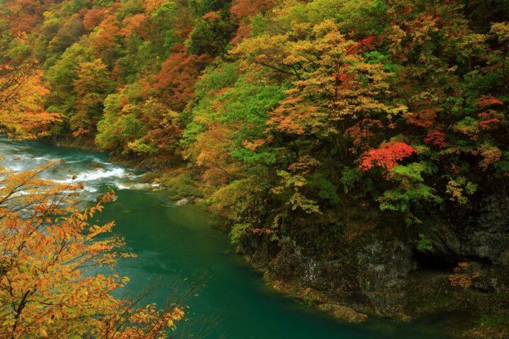 紅葉の抱返り渓谷