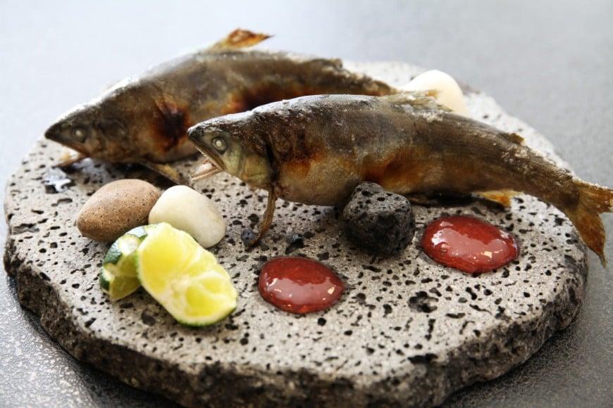 アオアヲ 徳島県産鮎の炭火焼き