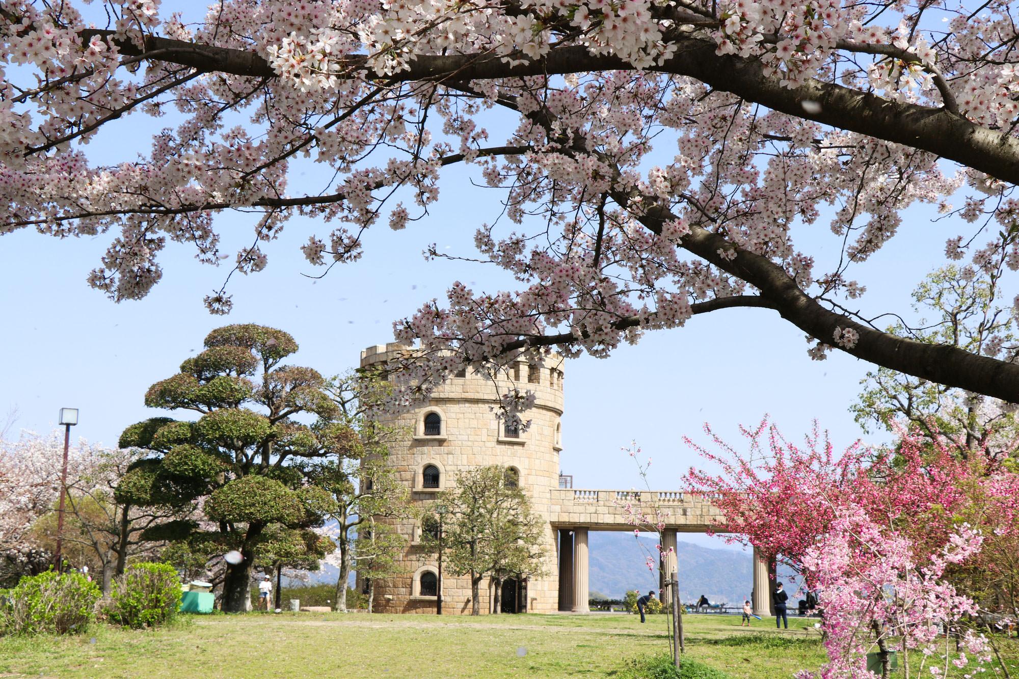松山総合公園展望塔
