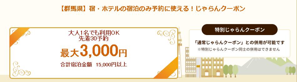 【予約数上限あり】群馬県で使える♪ふるさとお得クーポンプレゼント!