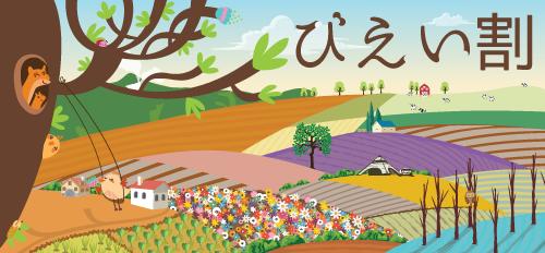 びえい割i2021